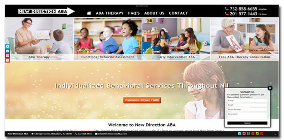 ABA Therapy Website Company